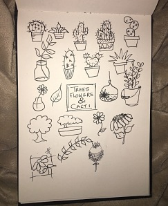 Cacti, cactus, flowers, plants